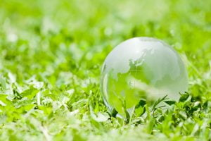 Terrestrial globe and field