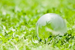 Green world lawn